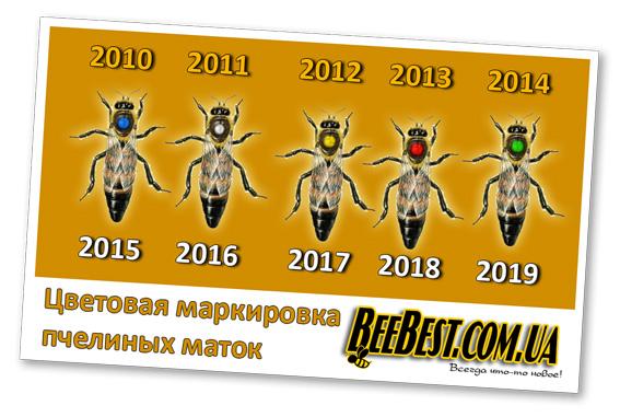 5 цветов для мечения маток в пчеловодстве