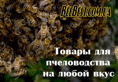 Самый широкий ассортимент товаров для пчеловодства только в БиБест